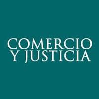 """11/07 """"La representación en juicio del menor adolescente"""""""