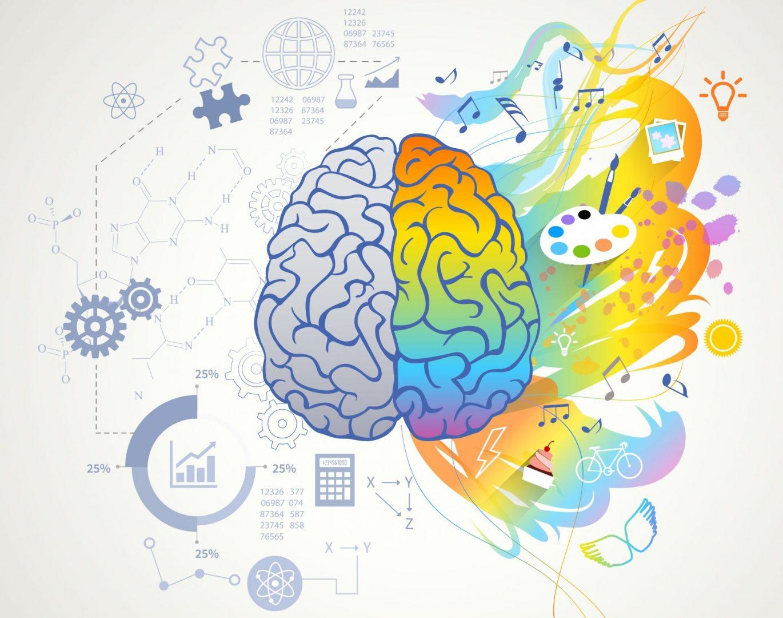 El aprendizaje como experiencia emotiva: Neurociencias aplicadas a la enseñanza de idiomas