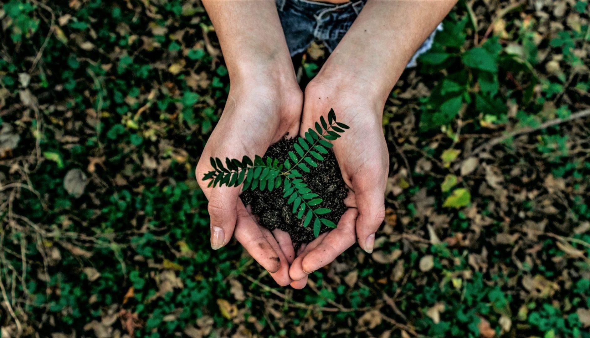 La Licenciatura en Gestión Ambiental cumple 20 años